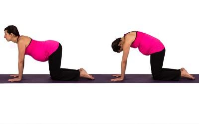 Yoga for Pregnancy | Cat Pose & Cat Cow