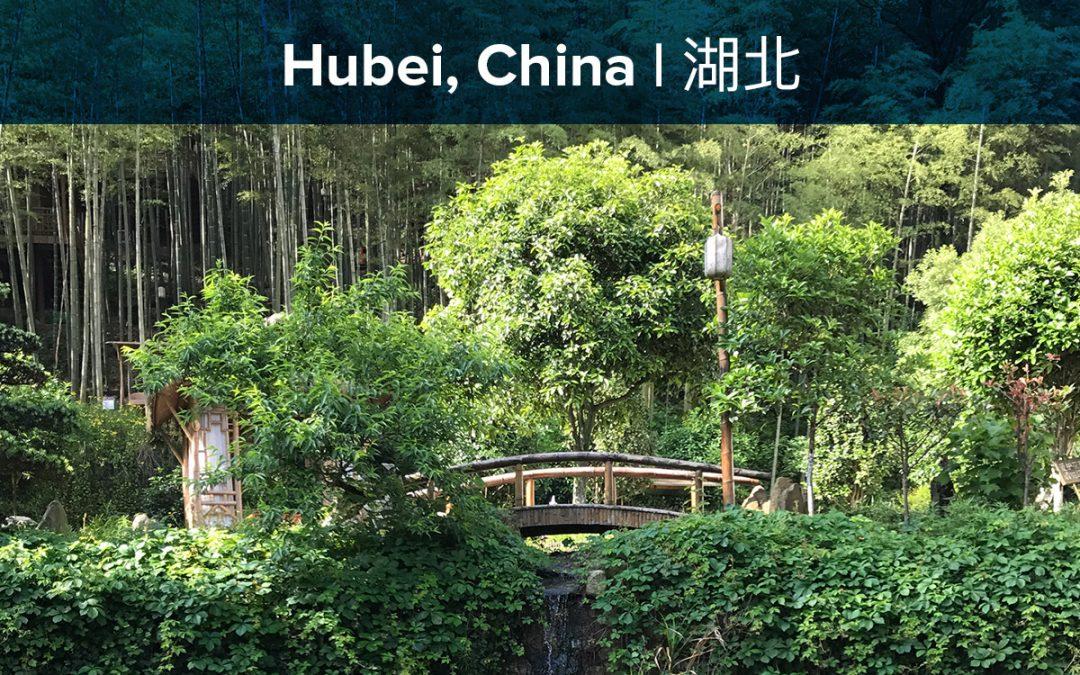 Prenatal Yoga Teacher Training – Hubei   May 16-25, 2019